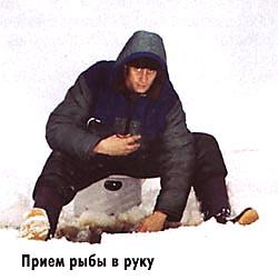 009-8.jpg