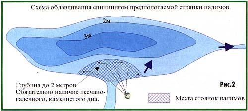 011-3.jpg