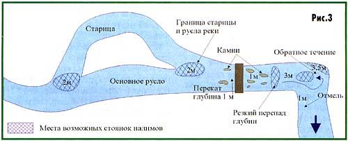 011-4.jpg