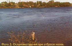 010-3.jpg