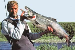 Доплывет ли балтийский лосось до Красной книги?