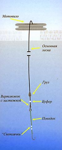 011-6.jpg