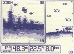 002-3.jpg