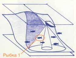 002-2.jpg
